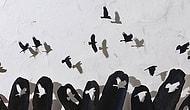 Kuş Tüyünden Yapılmış Yükte Hafif Sanatta Ağır 17 Muazzam Eser