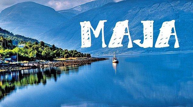 """Sizin adınız """"Maja"""" olurdu!"""