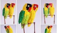 Lego'dan Yapılmış 20 Kuş Fotoğrafı