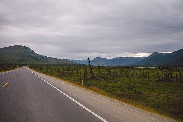 67. ''480 kilometre sonra ağaçları tekrar gördüğümüz için mutluyduk.''