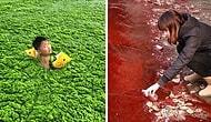 Çin'deki Çevre Kirliliği Sorununu Bütün Gerçekliğiyle Ortaya Koyan 20 Fotoğraf