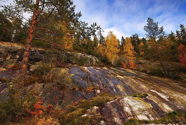 23. Çünkü yüzünü nereye dönersen dön, Finlandiya'nın doğası nefesinizi kesecek.