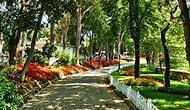 Ertuğrul Günay: 'Emirgan Korusu Yeni Bir Gezi Parkı Benzeri Talan Girişimi'