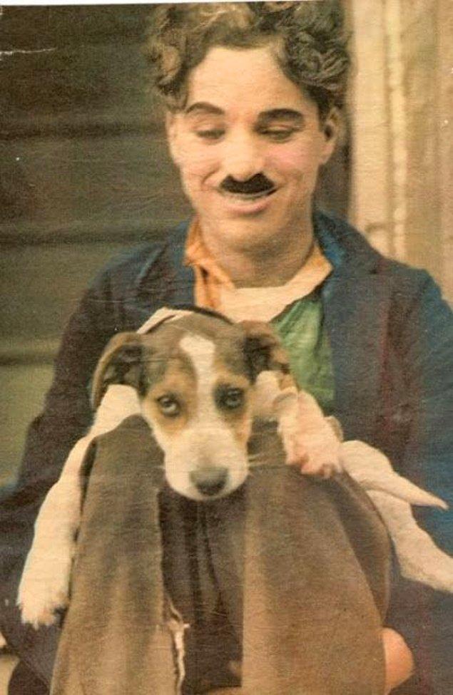 3. Ünlü şapkası olmadan Charlie Chaplin, sevimli dostunu severken.