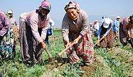 11 Maddede Türkiye'de Kadının Durumu