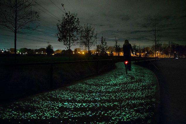 1. Bisiklet sürmek Hollanda'nın kültürel ve sosyal hayatının ayrılmaz bir parçasıdır.