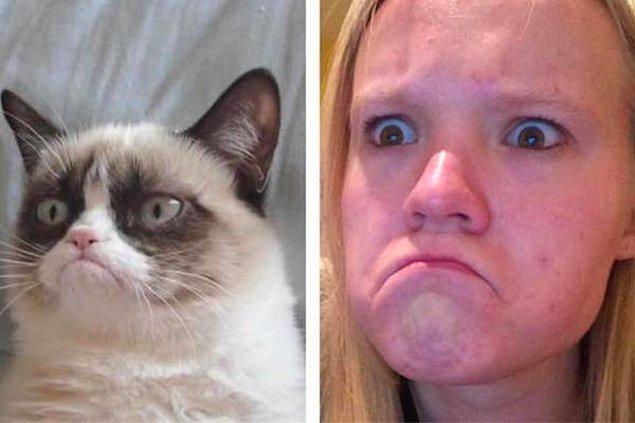 21. Grumpy cat