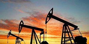 """Bakan Taner Yıldız: 'Kandil Dağı Eteklerinde Petrol Arayacağız"""""""