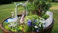 Evlerde Mini Bahçeler
