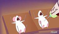 Hayvanlar Üzerinde Yapılan 'Korkunç' Deneyleri Anlatan Çizgi Film: Pinky And The Brain