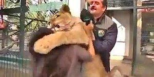 Çılgınlar Gibi Sarılan Yozgatlı Aslan