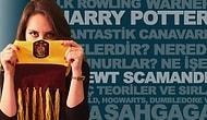 5 Maddede Yeni Harry Potter Spin-Off'u ve Son Durumu.