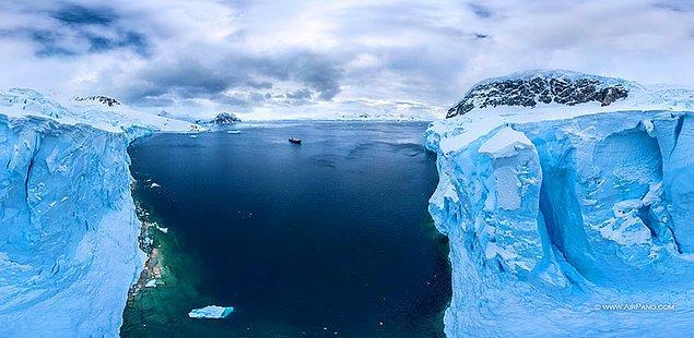 9. Kıtada 35 penguen türü, 200 balık türü, 12 balina, onlarca farklı kuş türü yaşıyor.