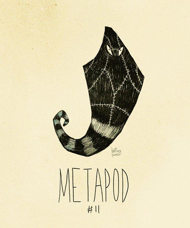 11. Metapod