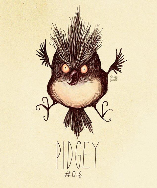 16. Pidgey