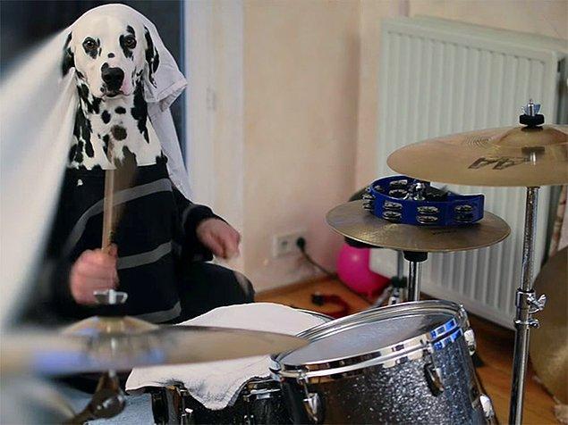 5. Whiplash: Puppy versiyon