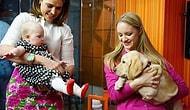 Evcil Hayvanların Evin Yeni Üyeleri Bebeklerle Tanıştığı Anı Yakalayan 22 Fotoğraf