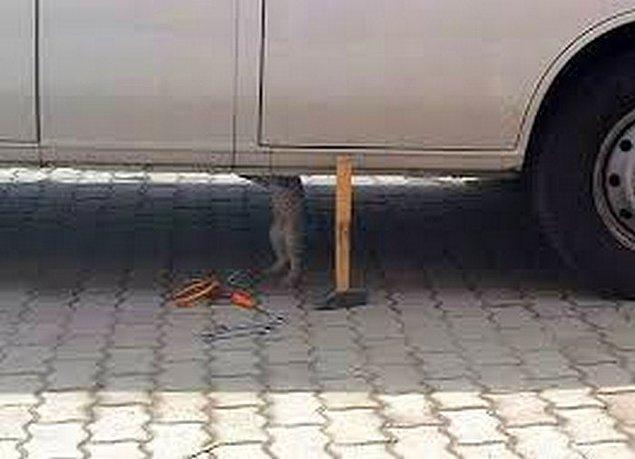 Her zaman arabaların altına uyumak için girmiyoruz herhaldeee. Yeteneksiz insanlar olunca duruma el atıyoruz !