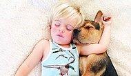Hunharca Uyuyan Sevimli Bebek ve Köpeğinin Kıskançlık Krizine Sokacak 14 Fotoğrafı
