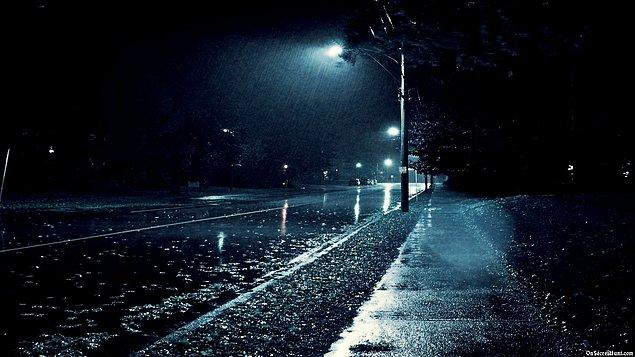 """18. """"Geceler, sonsuz gibi görünür. Fakat geceler, sonsuz değildir."""""""