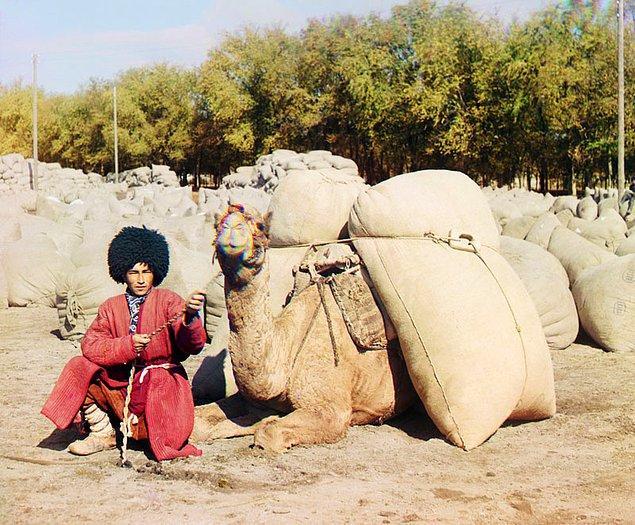 4. Devesiyle tahıl veya pamuk taşıyan bir Türkmen (1905-1915)