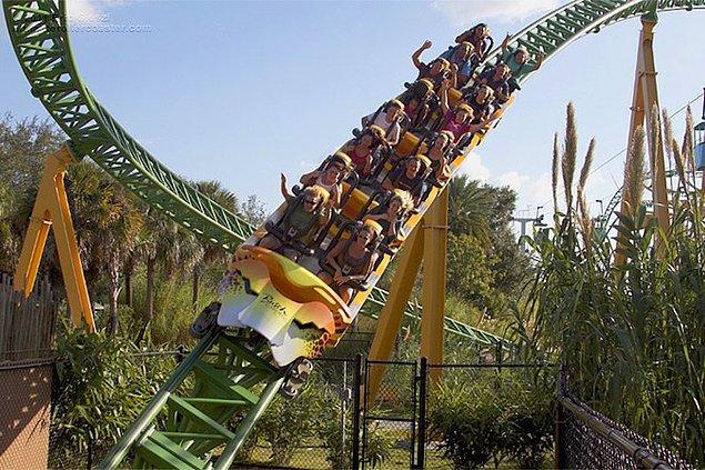 19. 'Roller Coaster'lar