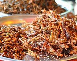'Iyy' Deme Nimet O! Böceklerden Terli Elbiselere Geleceğin 7 Besin Kaynağı