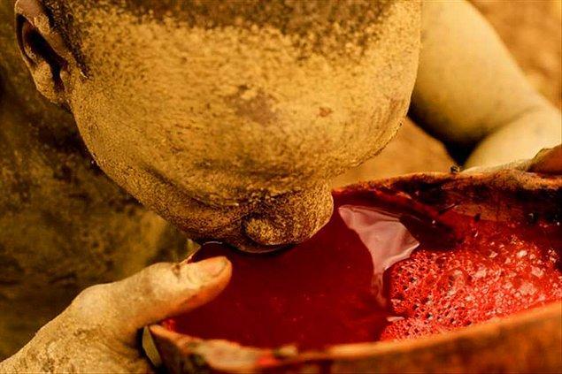 İnek kanı kokteyli - Etiyopya
