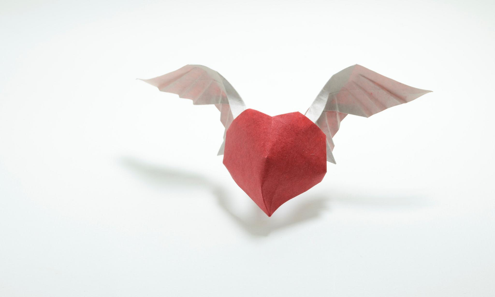 Сердце 44