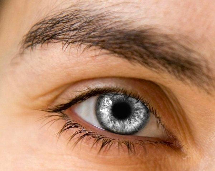 дорожки дерева серый цвет глаз у человека фото фарид приедет
