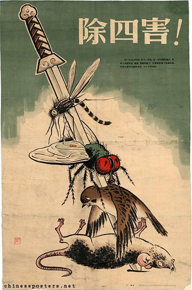 8. 1960 baharında tarlaları böcekler bastığında Çinli liderler öldürülen serçelerin böcekleri yiyerek aslında faydalı olduğunu fark etti.
