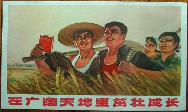 3. Bu yüzden 1958'de tarlalara zarar veren serçeler ve haşerelere karşı seferberlik ilan etti.