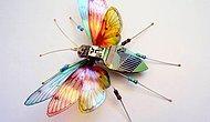 Hurda Bilgisayar Parçalarından Yapılan Birbirinden Güzel 9 Böcek Tasarımları