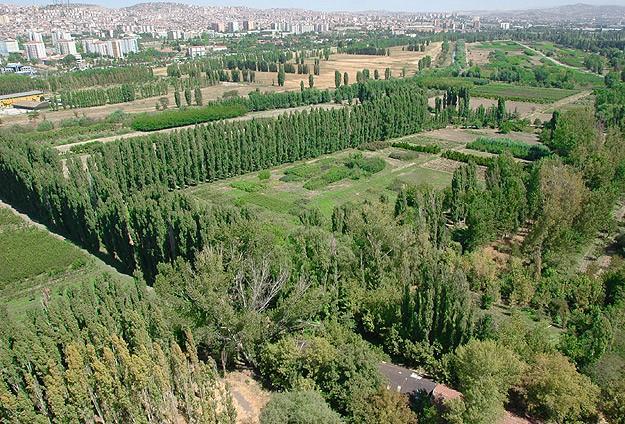 Atatürk Orman Çiftliği (AOÇ) 31