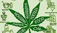 Marihuana'nın(Kenevir) Bilinmeyen 6 Faydası