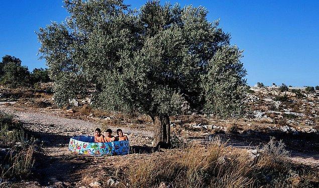8. Zeytin ağacının altında plastik havuzda serinleyen çocuklar