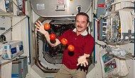 Sevimli Astronot Chris Hadfield'den Uzayda Yaşam Dersleri