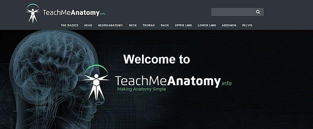 16. TeachMeAnatomy