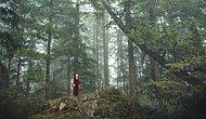 Elizabeth Gadd'in Nefes Kesen 14 Doğa Fotoğrafı