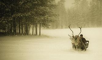 Finlandiya'ya Gidemiyorum Diye Hüngür Hüngür Ağlatacak 15 Sebep