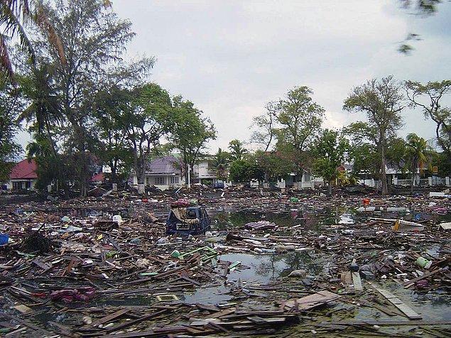 Tsunami sırasındaki olaylar