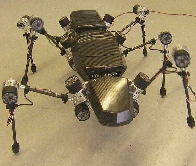 3. Robot Teknolojisi ve Böcekler