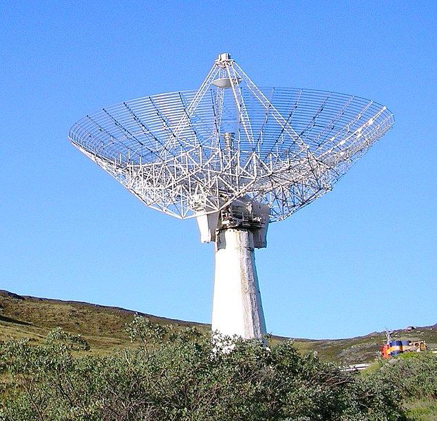 8. Radar ve Yarasa