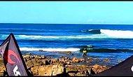 Yunuslarla Sörfçü Çarpıştı