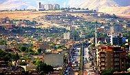12 Cevapla Cizre'de Yaşanan Olayları Anlamaya Çalışıyoruz