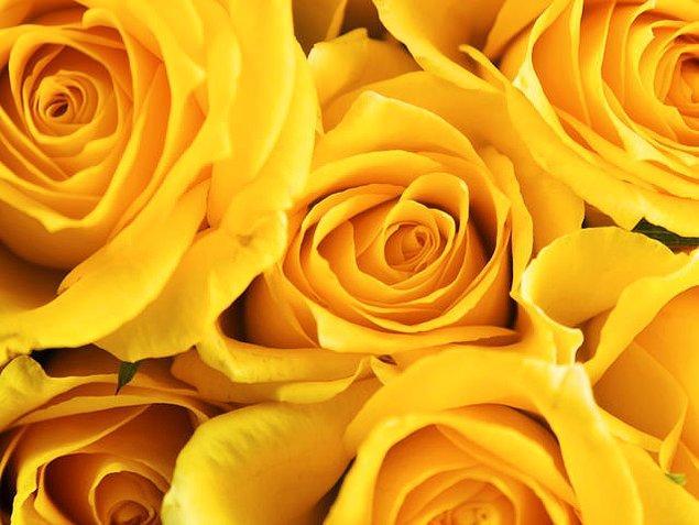 Sarı!