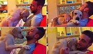 Bu Köpeğe Kim Küs Kalabilir: Sahibinden Özür Dileyen Köpek