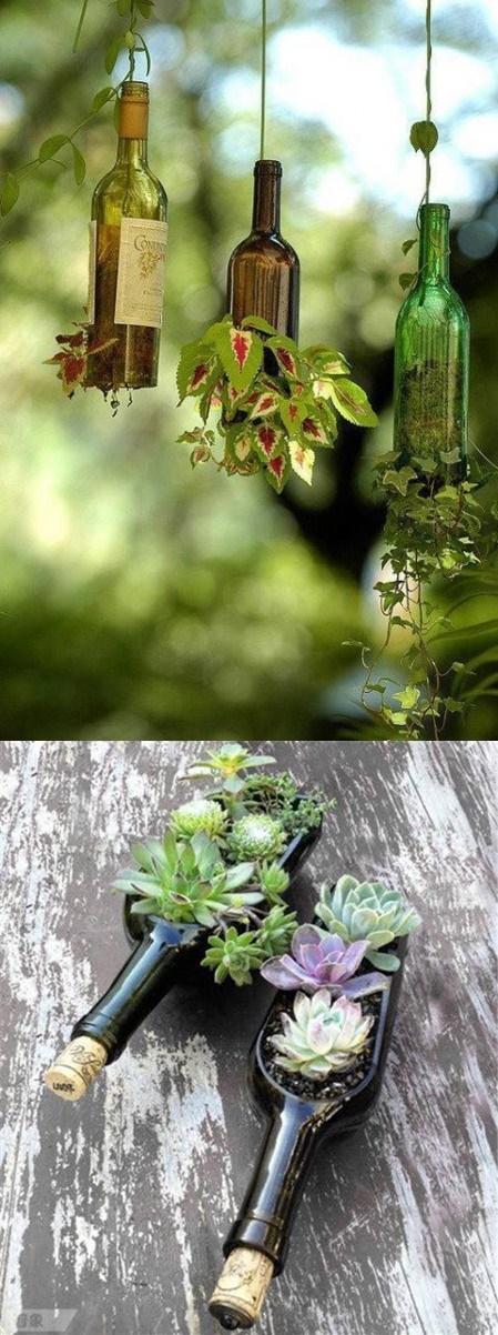 Hadi ipucu sorusu 9 Ocak cevabı: Yağı kozmetik ve eczacılıkta kullanılan ağaç hangisidir 20.30 Hadi ipucu 19