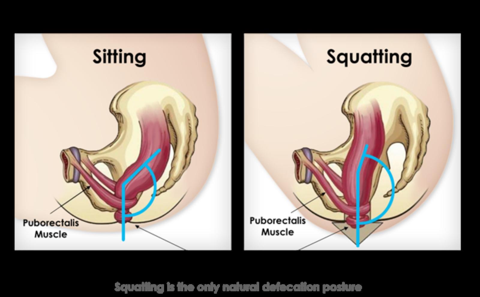 Çok oturmanın sağlığa zararları