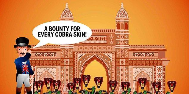Olay Hindistan'ın başkenti Delhi'de, o bölgenin İngiliz sömürgesi olduğu dönemde geçiyor.